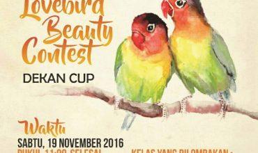 LoveBird Beauty Contest